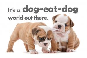 THÀNH NGỮ 8: Dog eat dog